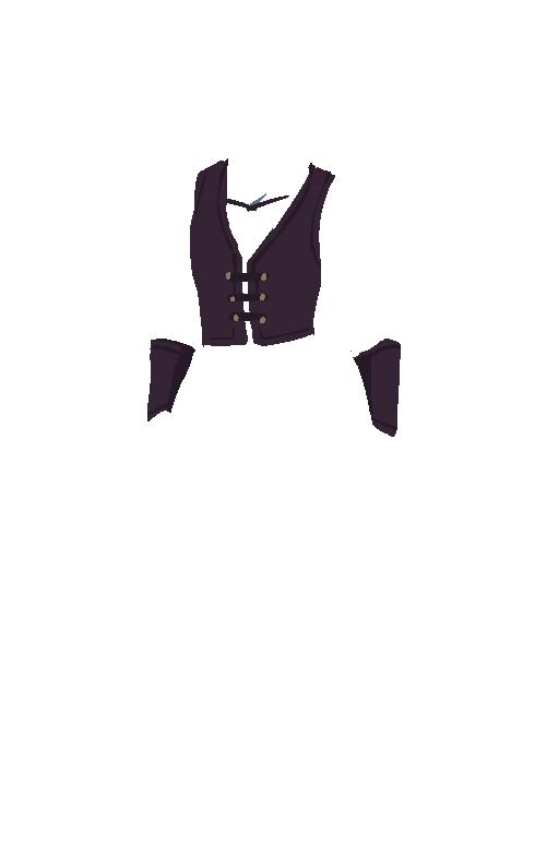 vest.png